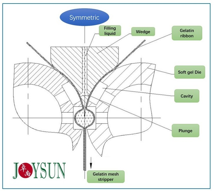 sofgel-encapsulation-formulation-mechanism