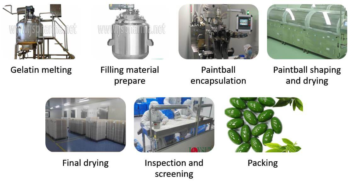 softgel-production-process