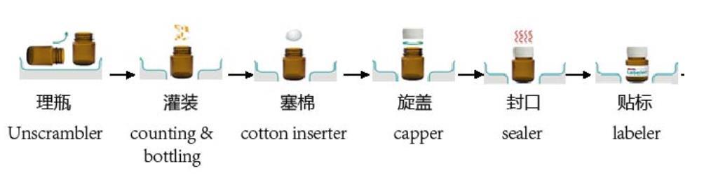 solid-capsule-bottling-line-workflow